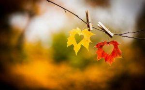 صور جميلة حب جديدة 1 450x281 300x187 صور عن الحب في البوم صور جديده ورمزيات وخلفيات رومانسيه