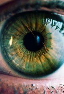 صور عين خضراء جميلة 1 307x450 205x300 صور وخلفيات ورمزيات عيون خضراء جذابة