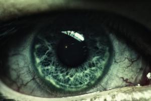 صور عيون خضراء 1 450x301 300x201 صور وخلفيات ورمزيات عيون خضراء جذابة