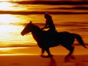 غروب الشمس علي البحر 1 450x338 300x225 صور لغروب الشمس على الشواطئ والمياه والبحار