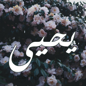 11 يحيى  300x300 افتراضي بالصور اسم يحيى عربي و انجليزي مزخرف , معنى اسم يحيى وشعر وغلاف ورمزيات
