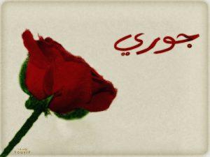 2015 1416807110 712 300x225 الصور اسم جورى عربي و انجليزي مزخرف , معنى اسم جورى وشعر وغلاف ورمزيات