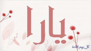 maxresdefault 32 300x169 الصور اسم يارا عربي و انجليزي مزخرف , معنى اسم يارا وشعر وغلاف ورمزيات