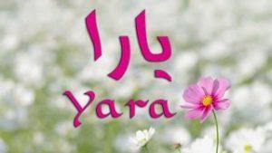 mqdefault 6 300x169 الصور اسم يارا عربي و انجليزي مزخرف , معنى اسم يارا وشعر وغلاف ورمزيات