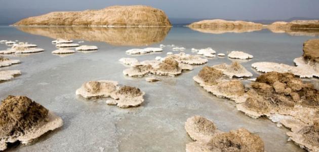 Photo of بحيرة عسل
