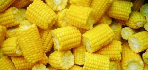 Photo of الذرة الصفراء