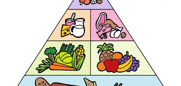 كتاب نظام الطبيب الغذائي pdf