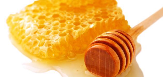 Photo of فوائد العسل الذي تفرزه النّحلة