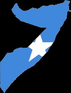 -علم-345x450-230x300 صور العلم الصومالي , رمزيات وخلفيات للعلم الصومالي