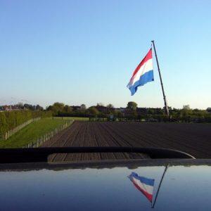 خلفيات علم هولندا 2 450x450 300x300 صور علم هولندا , خلفيات متنوعة للعلم الهولندي