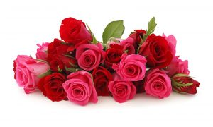 صور-باقة-ورد-ورود-جميلة-رومانسية-0-300x180 صور ورد, صور ورود متنوعه حمراء زرقاء جميلة لامعه, نوع جديد من الورد
