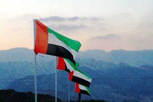 صور علم امارات العربية 1 450x300 300x200 صور اعلام دولة الامارات , رمزيات العلم الاماراتي لفايبر وواتس اب