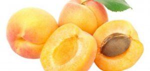 صور مشمش 3 450x214 300x143 صور عن المشمش للفيسبوك , خلفيات فاكهة المشمش