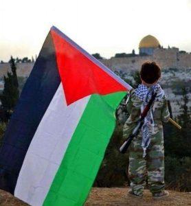 علم-فلسطين17-555x600-278x300 صور علم فلسطين, خلفيات ورمزيات فلسطين, صور متحركة لعلم فلسطين, Palestine