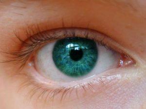 عين باللون الاخضر 1 450x338 300x225 صور وخلفيات ورمزيات عيون خضراء جذابة