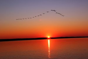 غروب-الشمس-300x200 صور ومناظر طبيعية, صور غروب الشمس, صور رائعة لشروق الشمس