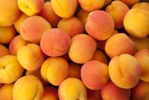 فاكهة المشمش 1 450x301 300x201 صور عن المشمش للفيسبوك , خلفيات فاكهة المشمش
