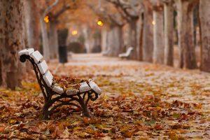 13-1-300x200 صور طبيعه للخريف والربيع hd , صور طبيعه رومانسيه خريف وربيع