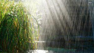 1fd234fd7f83be81917bc6b538600009-300x169 صور شتاء ومطر جديدة, الشتاء حزين الحب رومانسي بارد, صور سقوط امطار ,اغلفة مطر