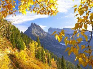 2015_1391652768_918-300x225 صور طبيعه للخريف والربيع hd , صور طبيعه رومانسيه خريف وربيع
