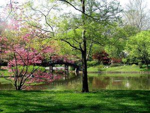 2015_1391652772_230-300x225 صور طبيعه للخريف والربيع hd , صور طبيعه رومانسيه خريف وربيع