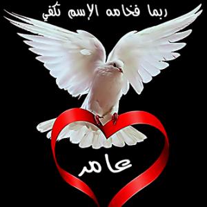 2015 1417491946 247 300x300 صور ِاسم عامر مزخرف انجليزى , معنى اسم عامر و شعر و غلاف و رمزيات