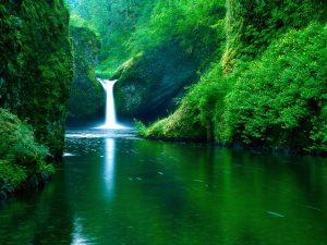 4038400-nature-images-hd-300x225 خلفيات طبيعية متنوعه, صور من الطبيعة تفتح النفس