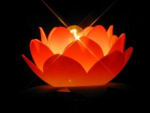 4468-4-300x225 اجمل صور شموع متحركة رومانسية, شمع متحرك حمراء بجودة عالية