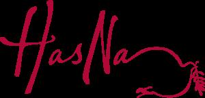 Hasna logo red 300x143 صور اسم حسناء مزخرف انجليزى , معنى اسم حسناء و شعر و غلاف و رمزيات