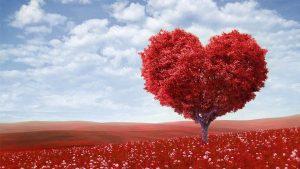 Valentines-Day-300x169 صور عيد الحب, خلفيات رمزيات عيد الحب, تاريخ عيد الحب, قصة عيد الحب