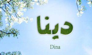 dina 300x180 صور ِاسم دينا مزخرف انجليزى , معنى اسم دينا و شعر و غلاف و رمزيات