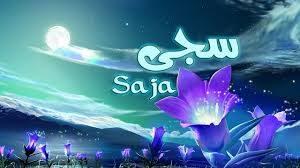 download 3 300x168 بالصور اسم سجى عربي و انجليزي مزخرف , معنى اسم سجى وشعر وغلاف ورمزيات