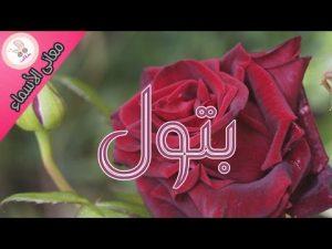 hqdefault 3 1 300x225 الصور اسم بتول عربي و انجليزي مزخرف , معنى اسم بتول وشعر وغلاف ورمزيات