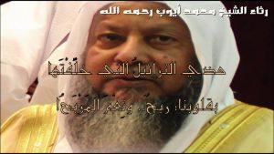 maxresdefault-1-51-300x169 صور خلفيات ورمزيات للايوب, الشيخ محمد ايوب بالصور جديدة, Photos ayoub