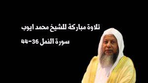 maxresdefault-2-15-300x169 صور خلفيات ورمزيات للايوب, الشيخ محمد ايوب بالصور جديدة, Photos ayoub