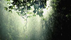 raining-1-300x169 صور شتاء ومطر جديدة, الشتاء حزين الحب رومانسي بارد, صور سقوط امطار ,اغلفة مطر