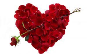 valentine-roses-300x188 صور عيد الحب, خلفيات رمزيات عيد الحب, تاريخ عيد الحب, قصة عيد الحب