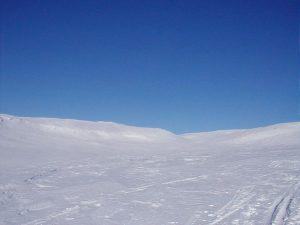 صور-برد-2-300x225 صور معبره عن الشتاء , خليفات جميلة تعبر عن فصل الشتاء