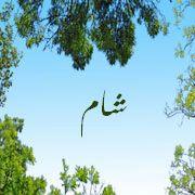 2015_1417879933_353 صور اسم شام مزخرف انجليزى , معنى اسم شام و شعر و غلاف و رمزيات