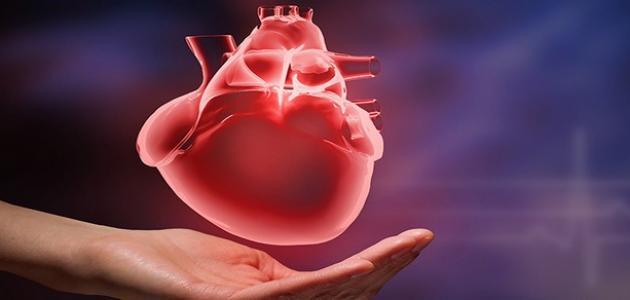 Photo of ما هي أعراض تضخم القلب