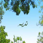 2015 1416981771 671 بالصور اسم نديم عربي و انجليزي مزخرف , معنى اسم نديم وشعر وغلاف ورمزيات
