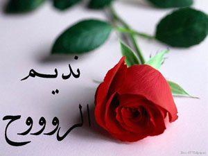 2015 1416981777 464 300x225 بالصور اسم نديم عربي و انجليزي مزخرف , معنى اسم نديم وشعر وغلاف ورمزيات