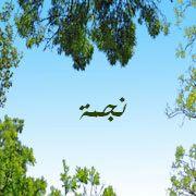 2015_1417401642_134 صور ِاسم نجمة مزخرف انجليزى , معنى اسم نجمة و شعر و غلاف و رمزيات