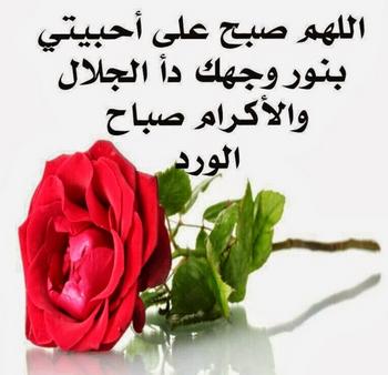 برودكاست صباح الخير تويتر اجمل تغريدات صباحيه صور صباح الخيرات