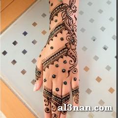 Image07780-24 بالصور نقوش حنة سودانية بالنشادر , رسومات حنة بسيطة وسهلة للجسم