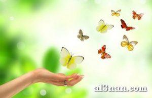 Image100000-10-300x193 صور صباح الخير , صور صباحيات جميلة , اجمل صور الصباح للفيس بوك